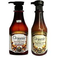 Combo dầu gội chống rụng tóc olive 750g  và sữa tắm thư giãn olive 750g