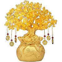 Cây Kim Tiền Mạ Vàng Phong Thủy Mang Lại Tài Lộc Cho Gia Chủ - Có 3 Kích cỡ