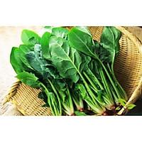 Hạt giống Cải bó xôi - đặc biệt tốt cho trẻ nhỏ, ng cao tuổi