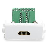 Nhân HDMI 1.4 lắp mặt ốp tường không cần hàn UGREEN 20315 - Hàng Chính Hãng