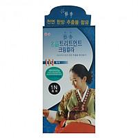 Thuốc nhuộm tóc thảo dược xanh  Yehyang Dream Color cao cấp Hàn Quốc (Asobu - 60g)