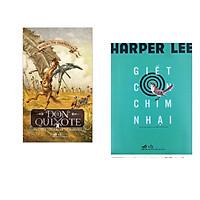 Combo 2 cuốn sách: Don Quixote nhà quý tộc tài ba xứ Mancha tập 2  + Giết con chim nhại
