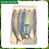 Cá Nục thuôn nguyên con HN 500gr (5-7 con)