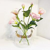 Bình  hoa thủy tinh kèm hoa lụa có quai treo Just For Storage