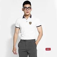 Áo thun nam cao cấp murad_fashion, áo phông nam màu trắng thêu logo đẹp 2021 atn101