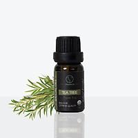 Tinh Dầu Hữu Cơ Tràm Trà | Organic Tea Tree Oil | Tinh dầu Nhập Khẩu USDA- Vnspecial Oils (10ml)