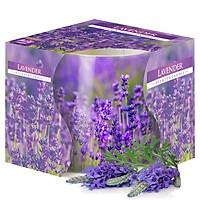 Ly nến thơm tinh dầu Bispol Lavender 100g QT024788 - cánh đồng oải hương