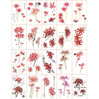 Set 5 Hình Xăm Dán Tattoo Hoa Bỉ Ngạn