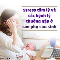Khóa Học Stress Tâm Lý Và Các Bệnh Lý Thường Gặp Ở Sản Phụ Sau Sinh
