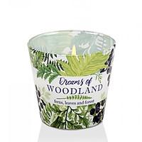 Ly nến thơm Bartek Candles BAT5222 Dream of Woodland 115g (Hương cây dương sỉ)