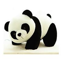 Thú Bông Gấu Trúc Panda Em Út Siêu Dễ Thương - 20cm