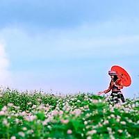 Tour Hà Giang 3N2Đ: Quản Bạ - Đồng Văn -...
