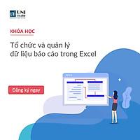 Khóa học Tổ chức và quản lý dữ liệu báo cáo trong Excel