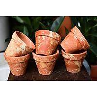 Combo 5 Chậu đất nung vân cẩm thạch có kích thước 7.5cm thích hợp trồng sen đá, xương rồng