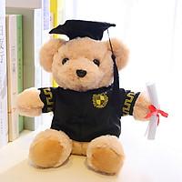 Gấu bông tốt nghiệp 25cm TNB214