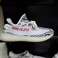 giày thể thao V 2 xám cam,trắng full l.sisame full hộp