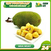[Chỉ giao HCM] 1 Trái Mít Tố Nữ Lâm Đồng Loại Ngon, Chín Ngọt Loại 1 (1kg/trái)