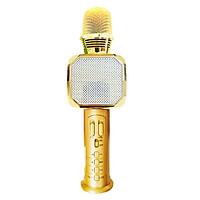 Micro karaoke Bluetooth  PF166 SD10  3 trong 1