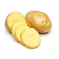 [Chỉ Giao HN] - Khoai tây - 1 kg