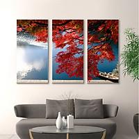 Tranh Trang Trí Hoa Phượng Đỏ - Tranh Canvas Treo Tường