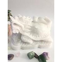 Long quy (Rùa đầu rồng)  trắng - đá thiên nhiên Việt Nam 15cm