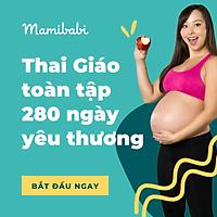Khóa học Thai giáo Mamibabi toàn tập 280 ngày yêu thương