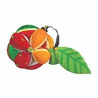 Bóng Montessori Fruits (PiPô Việt Nam)
