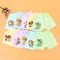Bộ 10 quần đùi cotton cho bé