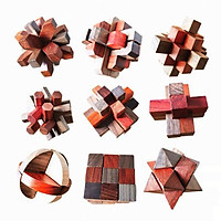 Wooden Brain Teaser Wooden Puzzles 9pcs IQ Test Toy 3D Wooden Toys for Kids Adults