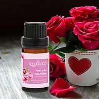 Tinh dầu hoa hồng nguyên chất, tinh dầu hoa hồng xông phòng cao cấp - Hương thơm sang trọng, quyến rũ - 10ml