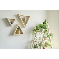set 3 kệ treo tường trang trí hình tam giác gỗ thông tự nhiên
