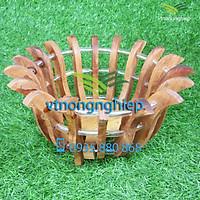 Chậu gỗ trồng lan, chậu gỗ căm xe trồng lan hình hoa sen, đường kính lọt lòng 20cm