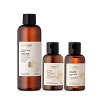Combo làm sạch da mụn Cocoon : 1 nước tẩy trang bí đao Cocoon 500ml + 1 gel bí đao rửa mặt Cocoon 140ml + 1 nước bí đao cân bằng da 140ml