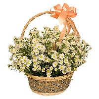 Giỏ hoa tươi - Vạn sự may mắn 3990