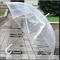 Ô, dù đi Mưa Trong Suốt Nhật Bản, Chất liệu Polyester Chống nước hiệu quả, Bỏ túi Tiện Dụng, Hàng chất lượng