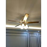 Quạt trần có đèn DQTTP-52-8012