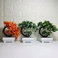 Combo 3 Chậu cây giả Bonsai Nhựa Để Bàn dáng nghiêng
