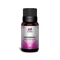 Tinh dầu nguyên chất Hương Thảo (Rosemary) – Essenbee – 20ml - Hỗ trợ thư giãn tinh thần hiệu quả và xua đuổi muỗi an toàn