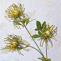 Hoa Giả Hoa Lụa - Combo 3 cành HOA CÚC ĐỊA ĐINH Giống Thật - 1 Cành 3 Bông