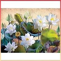 Bộ kit tranh handmade, tranh hoa sen tự đính đá 5D kích thước 30x40cm trang trí phòng khách nhẹ nhàng, ấn tượng TS-05