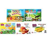 Bộ 5 túi thẻ flashcard giáo dục thông minh( trái cây-rau củ- động vật nuôi - các loài chim - côn trùng )