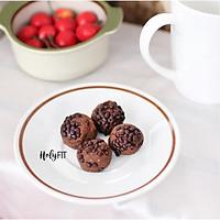 Bánh Hỗ Trợ Kiểm Soát Cơn Thèm Ăn, Bổ Sung Protein (Đạm) HOLYFIT (Vị Chocolate)
