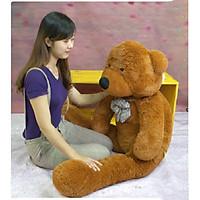 Gấu bông 1m4 khổng lồ Teddy Boyds