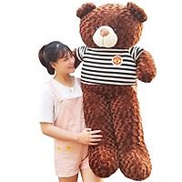 Gấu Bông Teddy 1m6 khổ vải cao 1m4 dễ thương