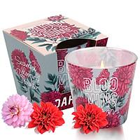 Ly nến thơm tinh dầu Bartek Blooming Season 115g QT04960 - hồng, thược dược (giao mẫu ngẫu nhiên)
