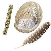 Sét phụ kiện 3 món đốt thảo dược để xông lá xô thơm - gỗ palo santo (Gồm 1 vỏ ốc sừng + 1 lông gà tây + 1 dây thánh cỏ)