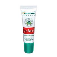 Son Dưỡng Môi Vitamin E / Lip Balm.