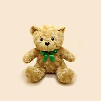 Bé Gấu Teddy Nhồi Bông - Stuffed Teddy Bear S20