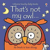 Usborne That's not my owl