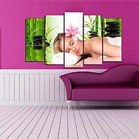 Tranh treo tường, tranh trang trí PP_ NT592 bộ 5 tấm ghép Spa
